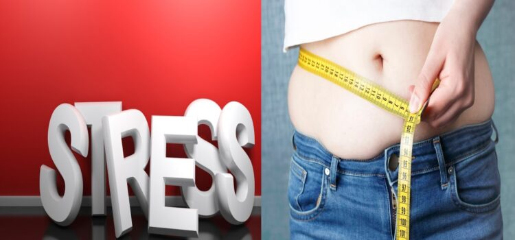 How does stress cause weight gain?